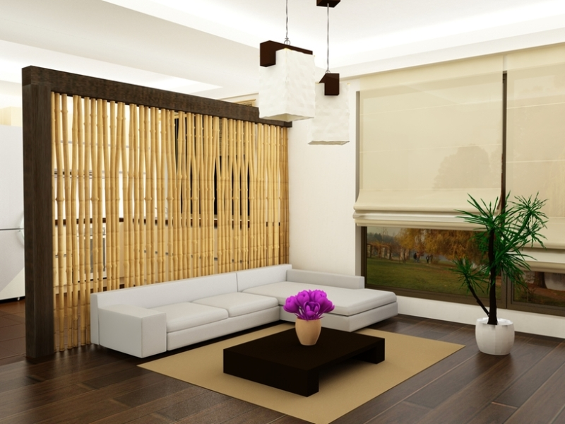 Room dividers ideas