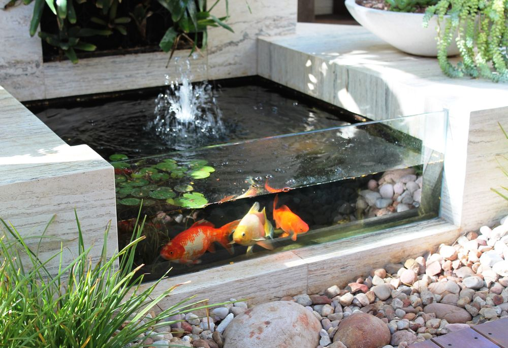 Garden ideas fish pool