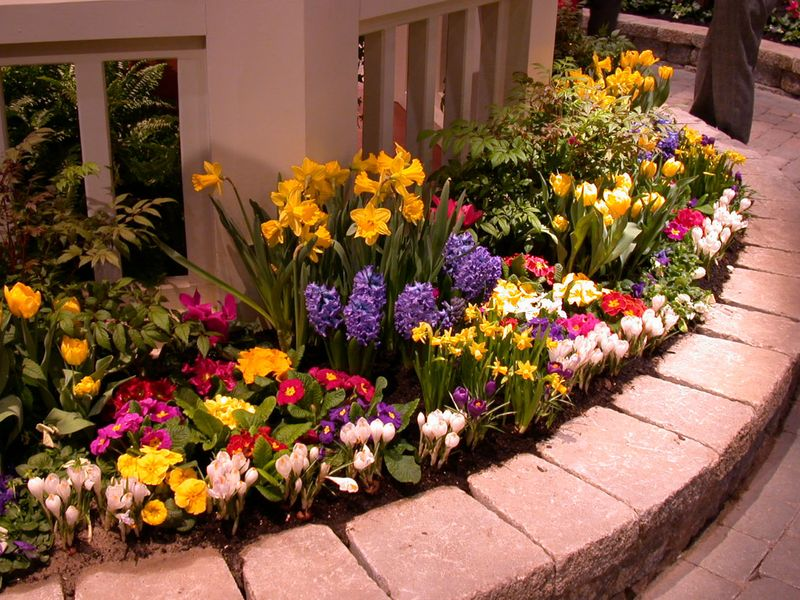 Garden landscaping with flowers