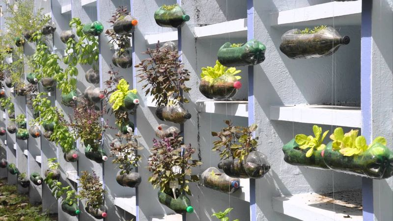 Enjoyable Garden Design For House Cadagu Com Inspirational Interior Design Netriciaus